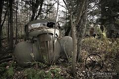 JZ556 (tfavretto) Tags: abandoned algoma car forgotten havilah ophir hempfest rust rusty sault soo leeburn poplar dale steering wheel bush antique classic