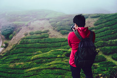 Backpacker traveling into tea field (Patrick Foto ;)) Tags: adventure agriculture air asian background backpack beautiful beauty cameron destination farm field fresh freshness grass green happy healthy highlands highlight hiking hill landscape leaf lifestyle malaysia male man mountain natural nature outdoor people person photographer plant plantation portrait relax shadow sky summer sunset tea tourism tourist travel view water young tanahrata pahang my
