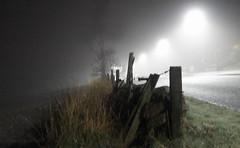 Misty nights! (Elisafox22) Tags: elisafox22 sony rx10m3 fencedfriday fencefriday hff night mist misty wooden gate fence old broken grasses road streetlights aberdeenshire outdoors scotland elisaliddell©2019