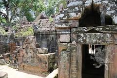 Angkor_Ta_Som_2014_25