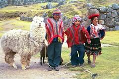 Sacsayhuaman 3 Children (jimarx) Tags: jimarx peru cusco bolivia southamerica sacsayhuaman llama alpaca