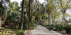 Málaga_20190319_120959 (Wayloncash) Tags: spanien spain andalusien málaga costadelsol