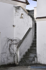 Niederösterreich Weinviertel Paasdorf_DSC0779 (reinhard_srb) Tags: niederösterreich weinviertel paasdorf kellergasse presshaus treppe stiege stufen mauer geometrie escher perspektive aufgang