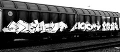 Graffiti on Freights (wojofoto) Tags: graffiti amsterdam nederland netherland holland freighttraingraffiti freighttrain freights fr8 cargotrain vrachttrein wojofoto wolfgangjosten rakie pony delta zwartwit monochrome blackandwhite schwarzweiss