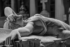 Love will tear us apart... (Gian Floridia) Tags: 1910 1980 genova iancurtis joydivision lovewilltearusapart onoratotoso ribaudo staglieno angelo copertina delusione depressione disco disteso fallimento punkmusic scultore suicidio tombaribaudo