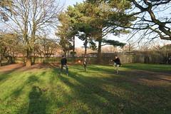 (Andrew Gallix) Tags: william yearfourteen brendan frank bushypark london football