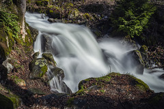 Todtnauer Wasserfall | Todtnau Waterfall (*Photofreaks*) Tags: schwarzwald blackforest badenwürttemberg badenwuerttemberg germany deutschland todtnau waterfall wasserfall wald forest woods water wasser trees bäume foliage laub blätter leaves nature natur rocks felsen stones steine adengs wwwphotofreakseu falls hochschwarzwald march märz 2019 landscape landschaft