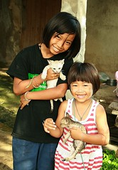 sisters with kittens (the foreign photographer - ฝรั่งถ่) Tags: two pretty sisters kitten khlong thanon portraits bangkok bangkhen thailand canon