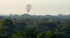 Morning balloons over Bagan (Northern Adventures) Tags: burma myanmar trip exploration holiday journey temple temples pagoda pagodas unesco worldheritage bagan