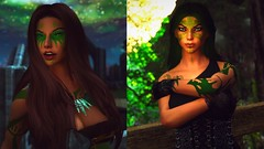 Greatness Transcends Generations! (Kali (Scarlet Elf)) Tags: skyrim family ancestry bosmer elf elves valenwood legendary warriors