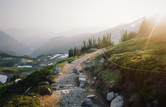 go forth into that warm light (manyfires) Tags: nikonf100 35mm analog film mtrainier mtrainiernationalpark washington pnw pacificnorthwest mountain valley meadow trail hike hiking path sunset golden magichour glow trees forest skylinetrail paradise landscape