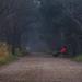 Esperando el verano (expl 261) (pascual 53) Tags: frio niebla laguna canon 7d 50mm largaexpo humedad invierno colores paseo