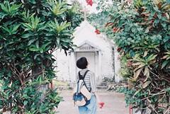 (Hsien hui Tsai) Tags: taiwan taitung film filmphotography backportrait green nikon nikonem em fuji fujifilm photography filmphoto 135mm red plants plant church girl 2019