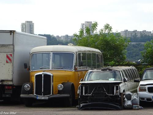 Bus & Limousines ©  peterolthof
