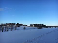IMG_5376 (lndrth) Tags: winter landscape finland turku blue skiing