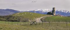 Azúa (Jose Peral Merino) Tags: azúa alava gamboa prado ovejas iglesia cercado montes nieve rural paisvasco euskadi