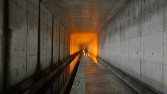 Walking the edge (palateth) Tags: lightpainting lightart night nophotoshop singleexposure urbex abandonnedplace backlight tunnel underworld