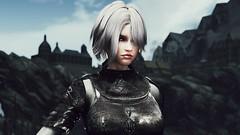 72850_20190213160353_1 (SasakiPajero) Tags: enb elder tes videogame v tesv face girl screenshot skyrim scrolls snapdragonprimeenb shorthair eyes 3d