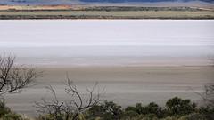 0422 Salzsee - salt lake; Bumbunga, Lochiel (roving_spirits) Tags: australia australien australie southaustralia
