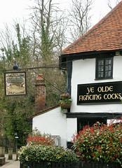 St Albans (scuba_dooba) Tags: st albans uk herts hertfordshire england roman remains ye olde fighting cocks oldest pub stalbans