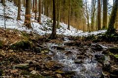 Im Dischautal (Andi Fritzsch) Tags: nature naturephotography landscape landscapephotography creek river riverscape riverscapephotography spring winterwonderland winter winterphotography wasser water bach erzgebirge nikond5100