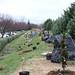 Ayrsley_Tree_Planting_2019_ (19)