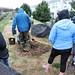 Ayrsley_Tree_Planting_2019_ (12)