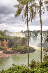 IMG_6799 (Dan Wilson Photographer) Tags: fozdoiguacu iguacu iguazufalls iguazuriver trees palms river water clouds stormy rocks leaves waterfall waterfalls falls