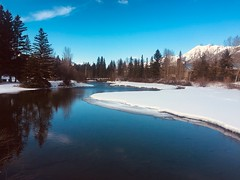 Exploring Canmore Alberta (Mr. Happy Face - Peace :)) Tags: canmore alberta canada art2019nature hiking albertabound cans2s trees forest river snow sky cloud ice rockies mountains boardwalk naturepark