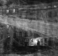 Tempestuous wind (paul.porral) Tags: flickr ngc longexposure poselongue night nuit citynight noiretblanc blackandwhite bnw outside mono monochrome windows lyon light street city cityscape lumière urban urbanlandscape ville nb bw