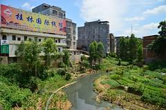 Laibin - Small Creek (cnmark) Tags: china guangxi laibin river flus water wasser bach creek fields trees felder bäume häuser buildings gebäude houses cityscape 中国 广西 来宾 柳来路 河 ©allrightsreserved