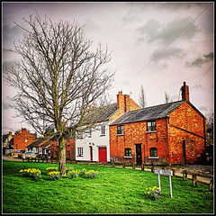 The Green, Braunston (Jason 87030) Tags: village northants northamptonshire local braunstion hosues cottages tree bare naked trunk branchs flowers sign daffs daffodils yellow green square frame effect weather couds huawei test experiment uk england scene