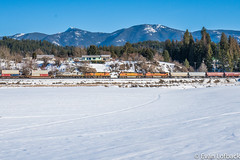 Three of Three (evanlofback) Tags: railroadbnsf kootenairiversub enginebnsf sunny winter snow bnsf5125 c449w bnsf5191 h2 meet intermodal grain mountains field bonnersferry