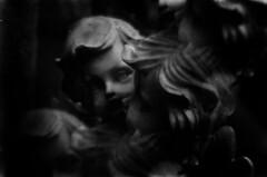 reverie (BleakView) Tags: bleak bleakview blackandwhite statue analogue angel cherub christian cupid daydream dream hope prayer death dying grave graveyard gravestone grain filmgrain filmerrors 35mm australia brisbane monochrome heaven end