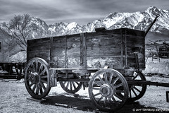 Wagons Ho (tom911r7) Tags: wagon easternsierra mountains abandoned wood wooden past highdesert bw trees leica leicacamera tombrichta tom911r7 tombrichtaworkshops tombrichtaphotography travel