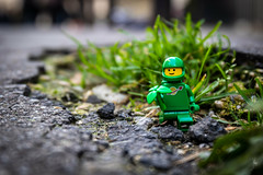 Green (Ballou34) Tags: 2019 7dmark2 7dmarkii 7d2 7dii afol ballou34 canon canon7dmarkii canon7dii eos eos7dmarkii eos7d2 eos7dii flickr lego legographer legography minifigures photography stuckinplastic toy toyphotography toys stuck in plastic grass environment ecology plant green space classic