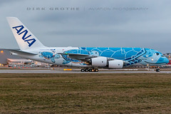 ANA_A380_JA381A_20190212_XFW-2 (Dirk Grothe | Aviation Photography) Tags: ana all nippon airways a380 ja381a turtle xfw