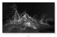 dARK (Rukiber) Tags: black white bw schnee snow schadow dark landschaft erzgebirge deutschland fichtelberg sachsen saxony