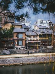 鴨川|京都 Kyoto (里卡豆) Tags: 京都市 京都府 日本 jp japan olympus olympusem1markii 40150mm f28 pro olympus40150mmf28pro omd em1markii