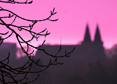 Twin Spires (PeskyMesky) Tags: aberdeen twinspires stmacharscathedral tree dof depthoffield sunrise sunset architecture landscape canon canon5d eos