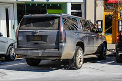 2018 Cadillac Escalade ESV (Rivitography) Tags: hcf9400 newyork cadillac escalade suv 4x4 american gm generalmotors caddy luxury expensive greenwich connecticut 2019 canon 60d adobe lightroom rivitography