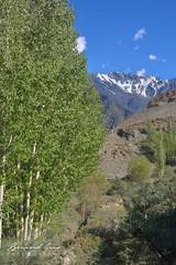 Sommets sur la rive opposée de Passu © Bernard Grua (Photos de voyages, d'expéditions et de reportages) Tags: glacier karakoram montagne hunza gojal bernardgrua passu gilgitbaltistan pakistan