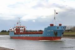 Ship. Wilson Elbe 9060675 (dickodt65) Tags: ship coaster boston portofboston port thehaven wilson elbe