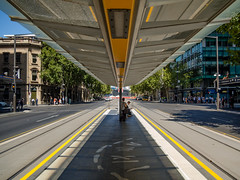 Tram Stop (Anthony Kernich Photo) Tags: adelaide australia southaustralia sa city cityscape streetscape street kingwilliamstreet station stop tram lightrail transport perspective vanishingpoint symmetry composition structure olympusem10 olympus olympusomd microfourthirds outdoor road avenue boulevard downtown cbd urban