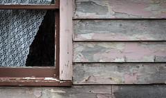 Better Days ... (vanessa violet) Tags: story betterdays home house abandoned peelingpaint siding wood window hww windowwednesday curtain lace