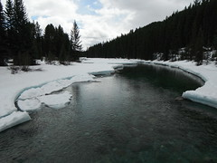 Spring Hiking Bow River Lake Louise (Mr. Happy Face - Peace :)) Tags: cans2s lakelouise albertabound alberta parkscanada nature hiking outdoors bowriver flickrfriday sky cloud tree forest art2019 scenery landscape trails townsite banff parkway