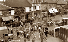 Rochford Market (footstepsphotos) Tags: rochford market essex people animal cattle pen lorry hartley old vintage postcard past historic heath young shop