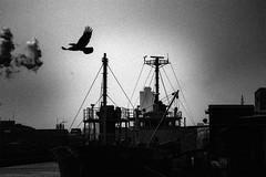 P4065045D Urban space (soyokazeojisan) Tags: japan osaka city bw blackandwhite monochrome digital olympus em1markⅱ 12100mm 2019