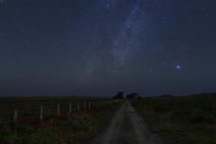 December Sky (fksr) Tags: nightsky stars milkyway vega road fence trees horizon pacificocean pointreyesnationalseashore landscape marincounty california astrometrydotnet:id=nova3119376 astrometrydotnet:status=solved