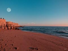 img (lauracastillo5) Tags: moonrise moon fullmoon sky blue sunset sunrise sand beach sea seascape seashore ocean horizon landscape